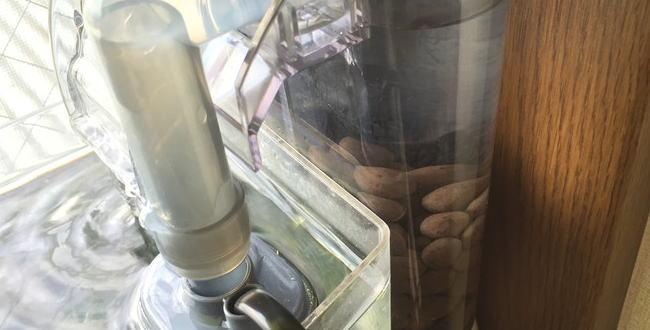 「外掛式フィルターにろ過材を追加【400円水槽飼育記録10】」のアイキャッチ画像