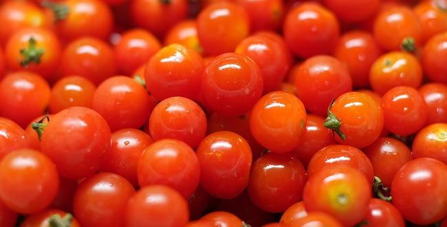 「ミニトマトの家庭菜園記録【プランター菜園】」のアイキャッチ画像