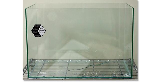 「メイン水槽の飼育内容公開【金魚の飼い方】」のアイキャッチ画像